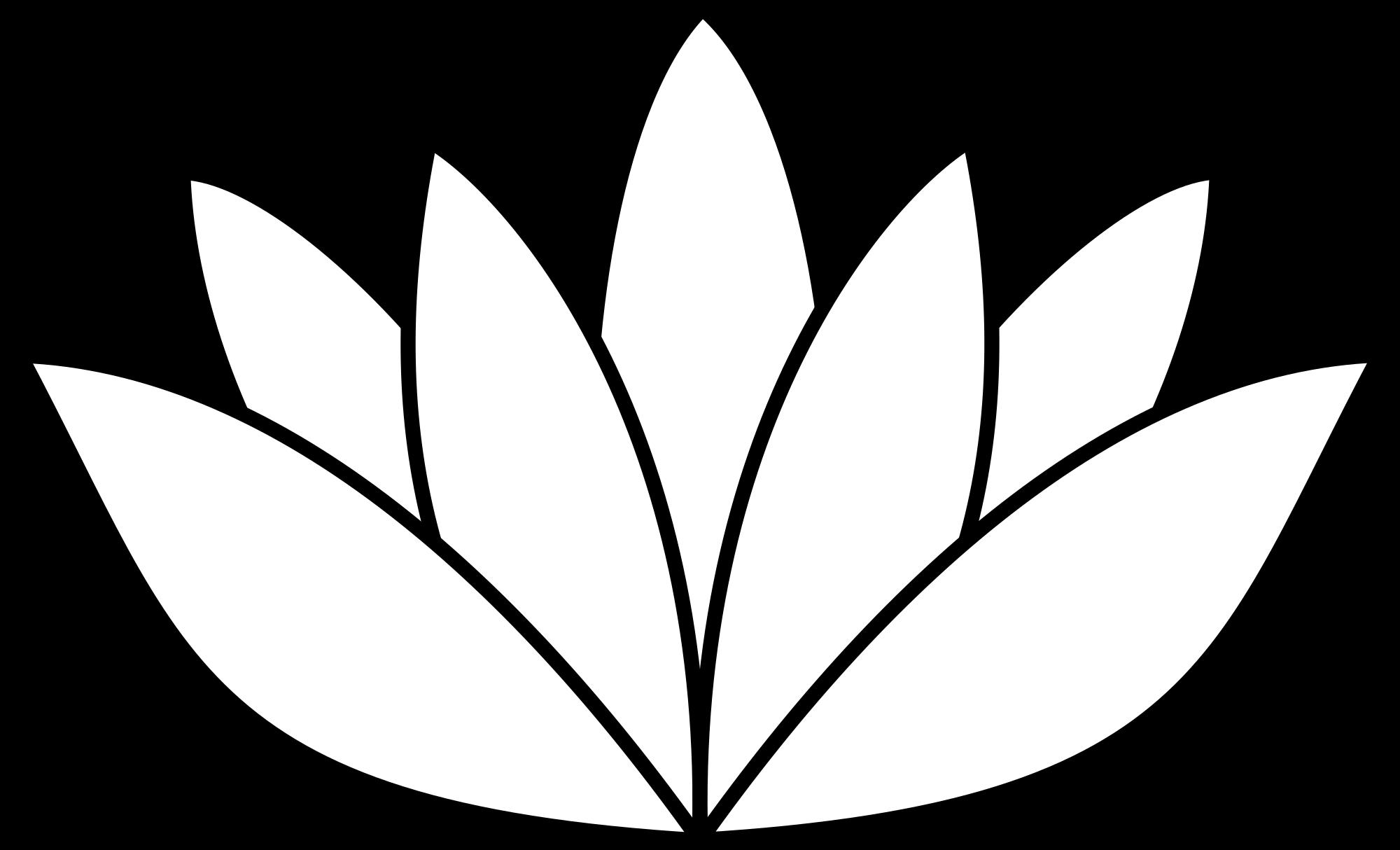 Ren Shiro LAN